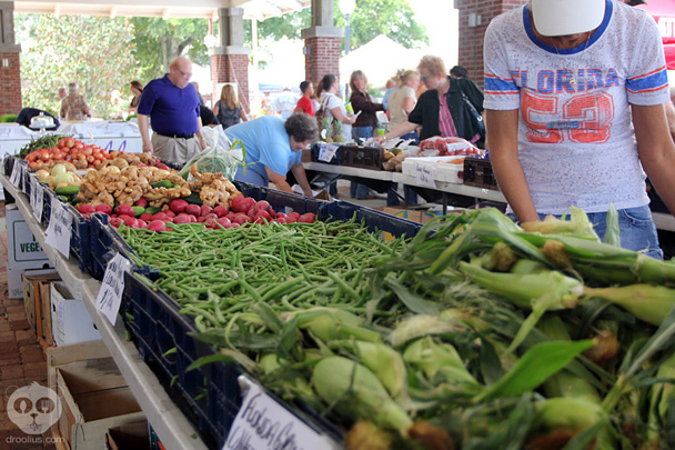 Inaugural Winter Garden Harvest Festival On May 5th Upcoming Event Droolius